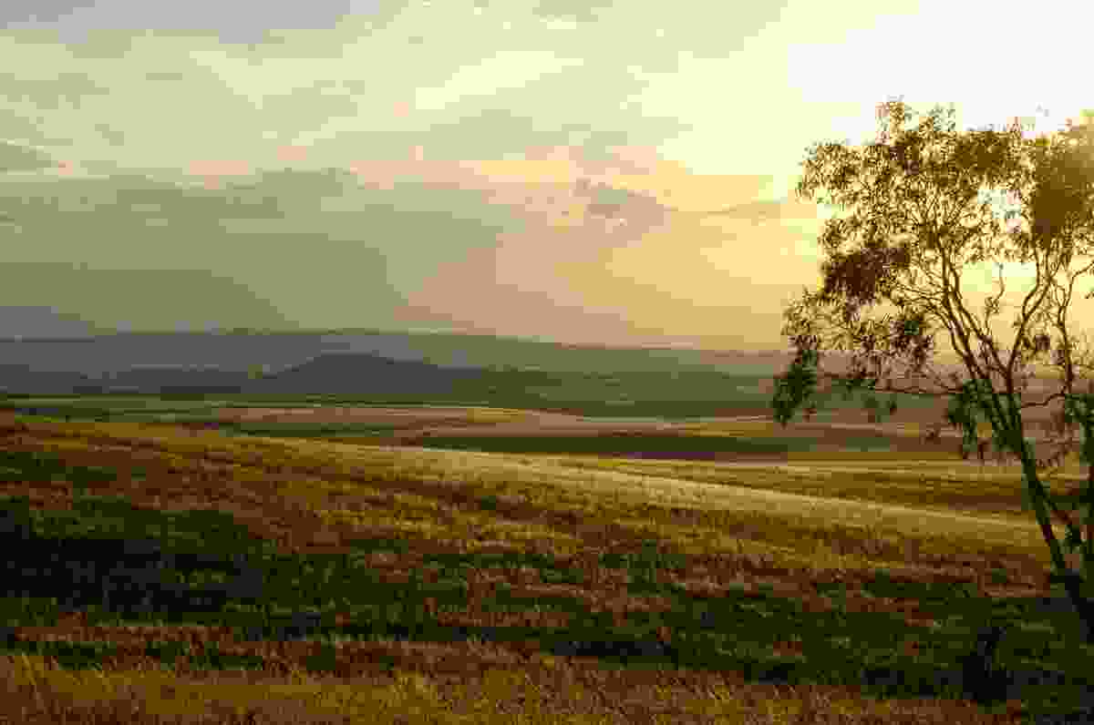 Charles Massy's farm is on the Monaro plateau to the east of Mount Kosciuszko.
