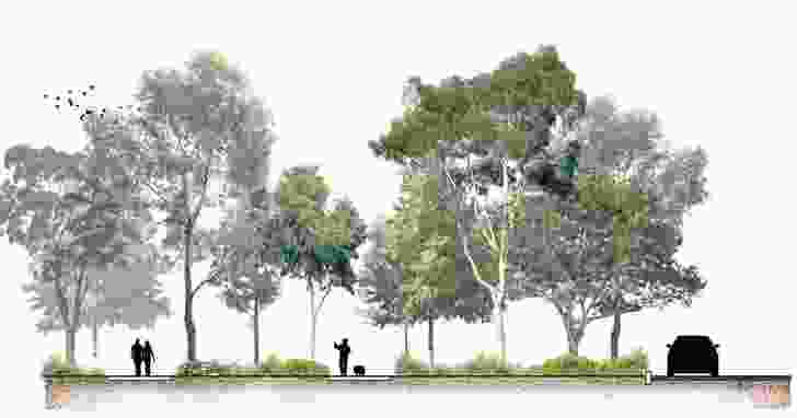 Cross-section of the proposed woodland along the park's border with Queens Road.