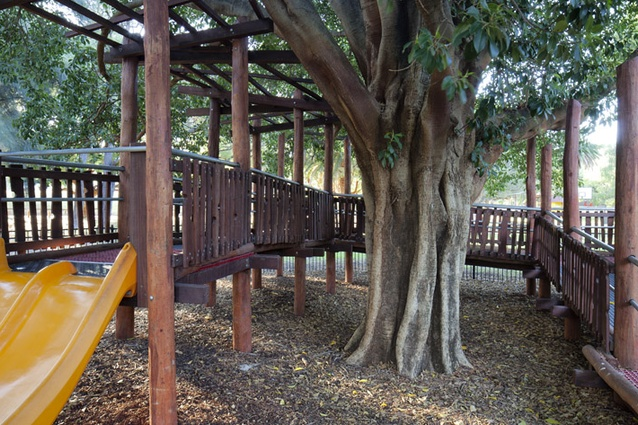 Care was taken to ensure that the existing trees were protected and showcased in the design.