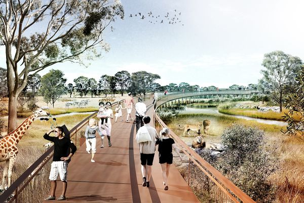 Elevated boardwalks over the African grasslands at the proposed Sydney Zoo masterplanned by Aspect Studios.