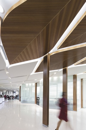 Tim greer cloudy bay and beyond architectureau - Commercial van interiors san diego ...