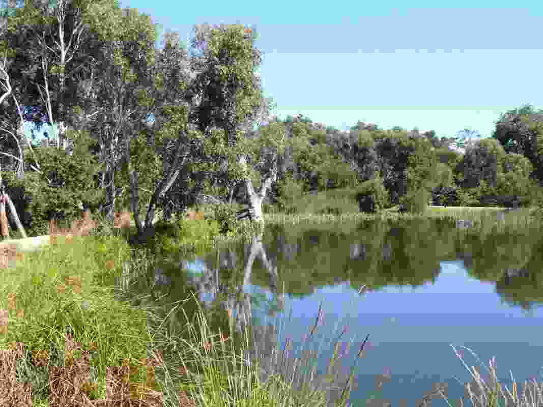 North Gardens Sculpture Park Landscape Master Plan by Mandy Nicholson – Tharangalk Art, Glenn Romanis, Isobel Paton – Basalt: Art, Landscape, Sculpture, and David S Jones – Deakin University