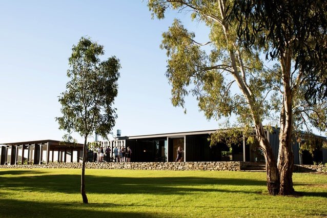 The Mitolo Wines Cellar Door and Restaurant by Tectvs consists slender roof resting on two black boxes.