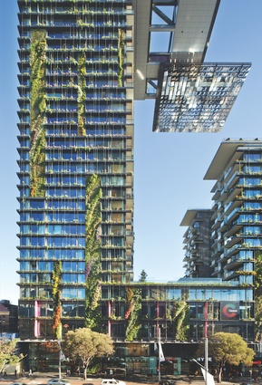 Patrick Blanc's tallest vertical garden ever, at Sydney's One Central Park by Ateliers Jean Nouvel and PTW Architects.