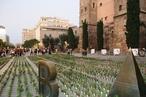 Entries open: 10th Rosa Barba Landscape Prize