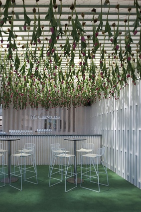 Hundred of tulips hung from the ceiling at the Lexus Design Pavilion.