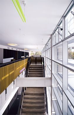 Looking down the length of the transparent circulation spine, with suspended coloured lighting and woven balustrades.
