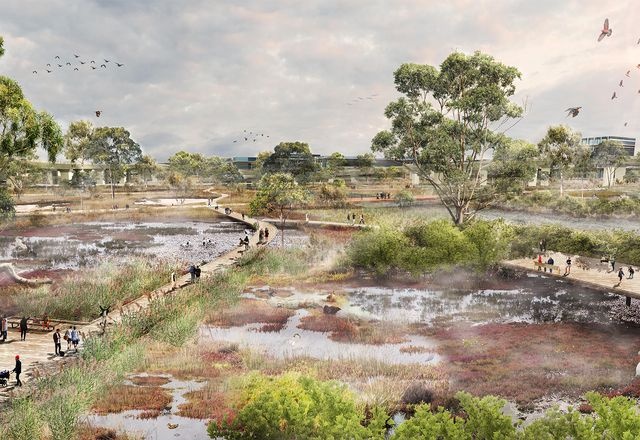 Moonee Ponds Creek Strategic Opportunities Plan by McGregor Coxall