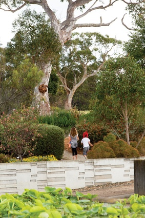 Children exploring the interior garden.