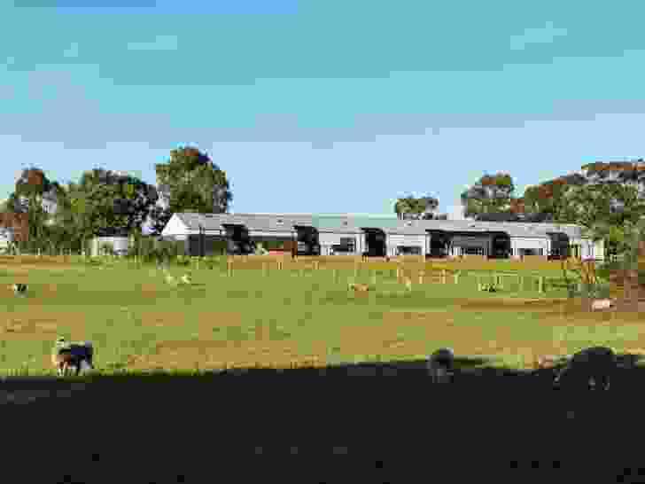Each room looks over a hillside with gum trees, sheep and grassy fields.