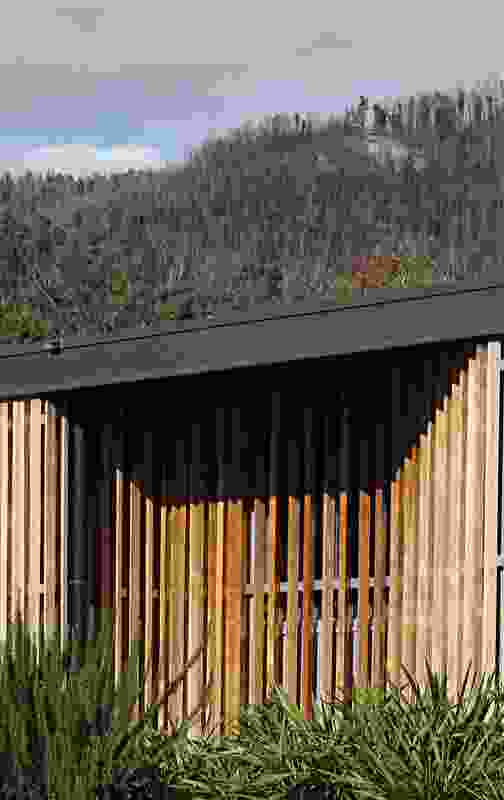 Timber palings are reminiscent of the trunks of the mountain ash trees scattered across the surrounding landscape.
