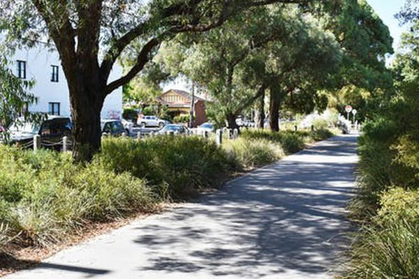 Our mental health benefits when nature is part of our neighbourhoods, as in this residential street in Fitzroy, Melbourne.