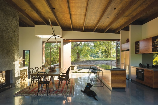 The kitchen and dining space open onto a two-level courtyard, where a treasured poinciana tree marks the point where the man-made environs finish and the wildness takes over.