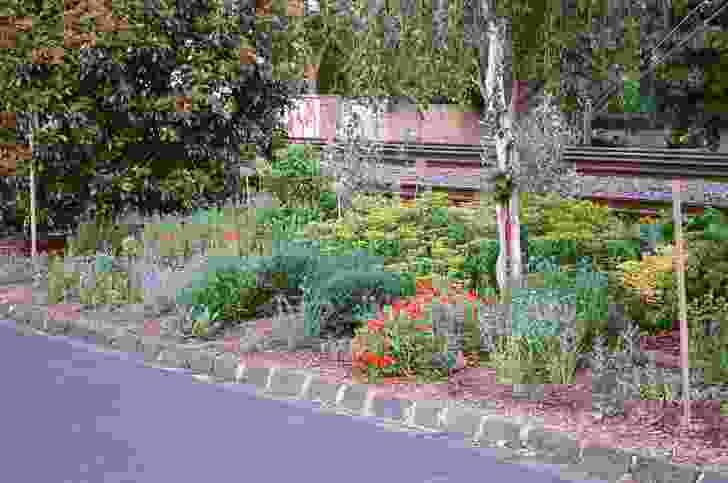 The unofficial garden in spring 2014.