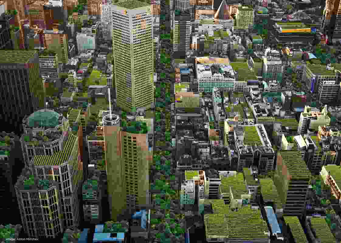 The City of Melbourne's Urban Forest Strategy could be copied in other urban areas across the country, in a project proposed by the 202020 Vision initiative.