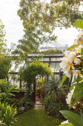 The planting at the extensive waterfront garden at Wyoming on Sydney Harbour reflects the lush, sub-tropical possibilities of gardening in Sydney.