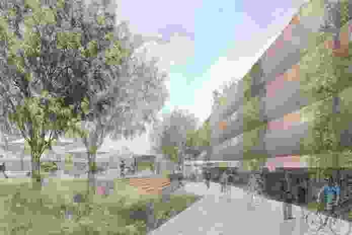 Springwood Town Centre Masterplan – McGregor Coxall.