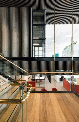 A sweeping staircase, in spotted gum and polished brass, connects the different levels of the office.