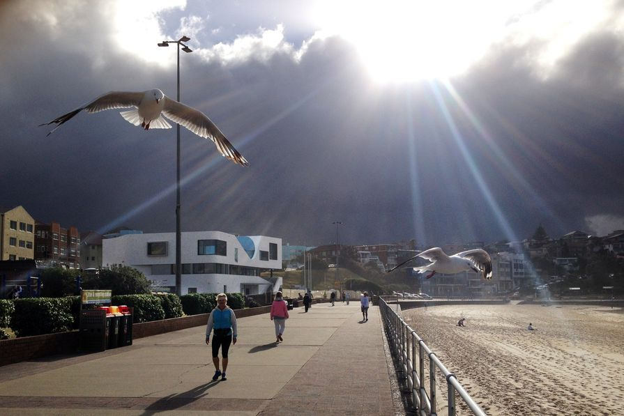 North Bondi Surf Life Saving Club by Durbach Block Jaggers Architects with Peter Colquhoun.