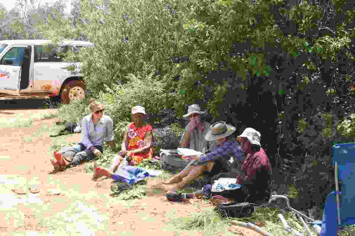 Field survey reviewing Yawuru habitats and seasons.