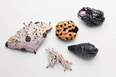 (Left to Right) Spiky Sea Sponge; Hollow Pink Tube; Orange Shell; Bearded Shell; Purple Weed, brooches from the Scintilla series (2010), oxidized sterling silver, enamel paint, wax, dimensions variable.