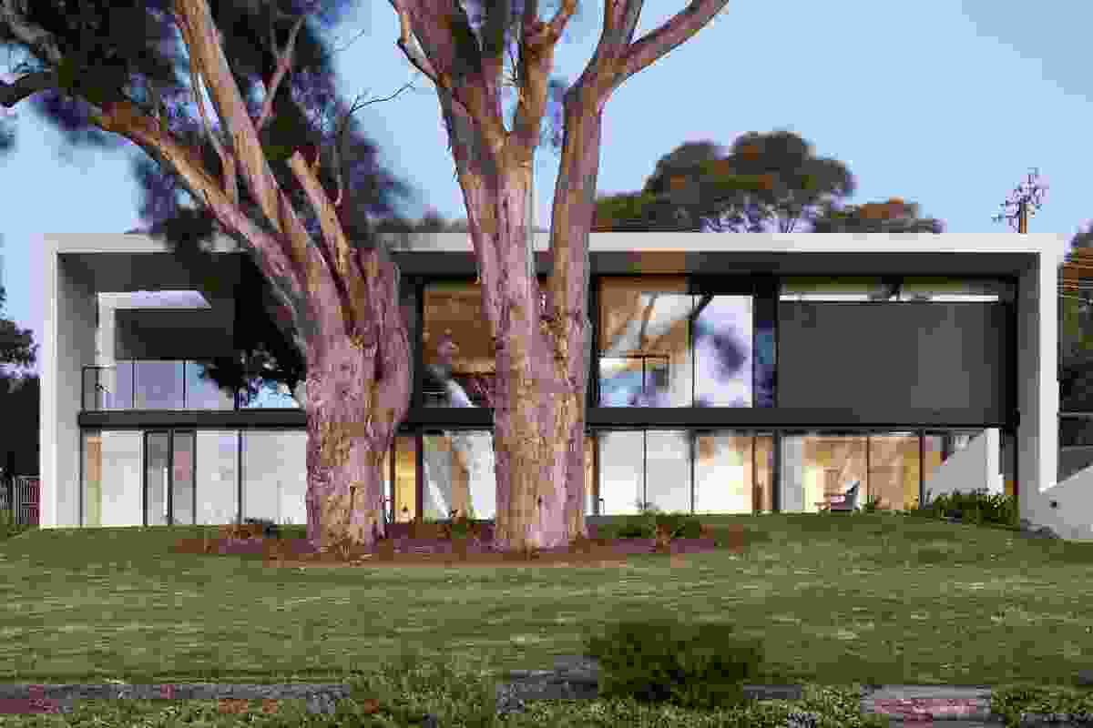 Sugar Gum House by Architects Ink.