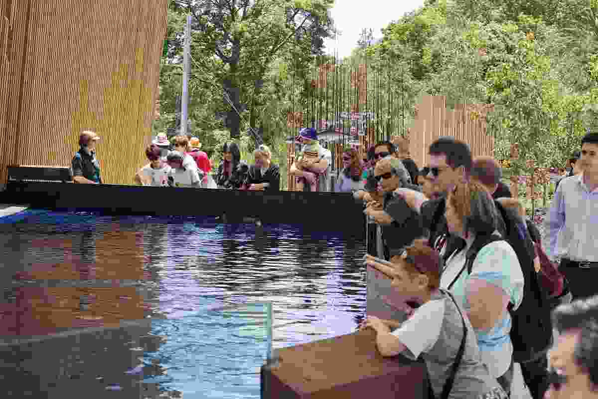 The Penguin pool is especially popular and allows close viewing of the penguins as they move through the water with incredible ease.