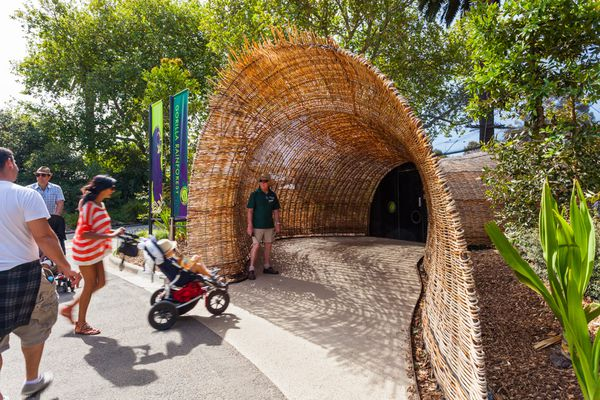 Entrance to the lemur enclosure attracts visitors from the main walking path at Melbourne Zoo.
