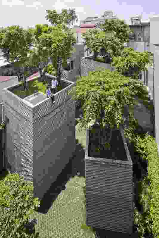 Each of House for Trees' concrete volumes, constructed using bamboo formwork, is designed as a giant pot for holding trees.