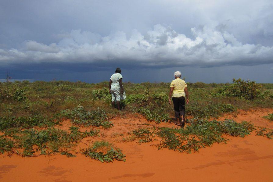 Cissy Djiaween and Irene Davey collecting Terminalia ferdinandiana.