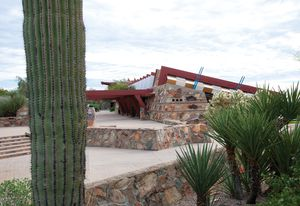 The designed plantings at Taliesin West are not only drought-tolerant, but largely drought-proof, meaning they can survive on almost no water.