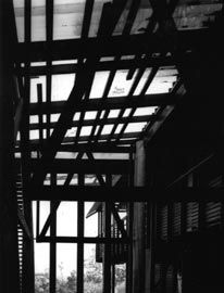 Mooloomba House. Photograph Patrick Bingham-Hall.