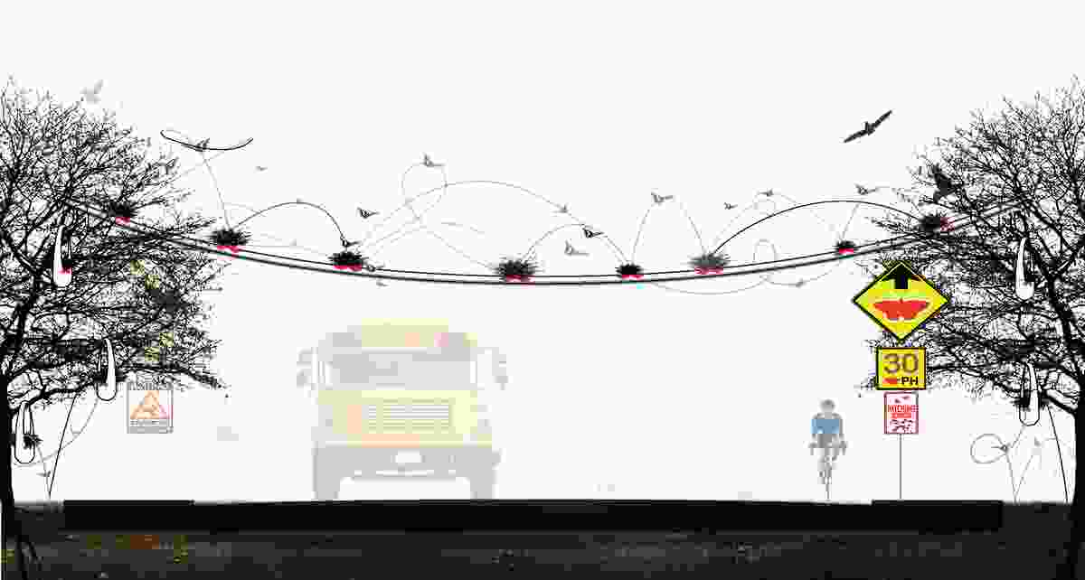 The xClinic's Butterfly Bridge project – a suspended path planted with enticing flowers and plants – allows butterflies to navigate obstacles in urban settings.