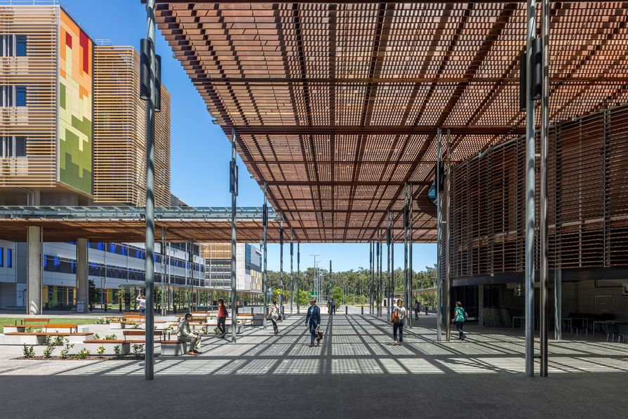 Patients and visitors arrive at Sunshine Coast University Hospital via a generous civic space.