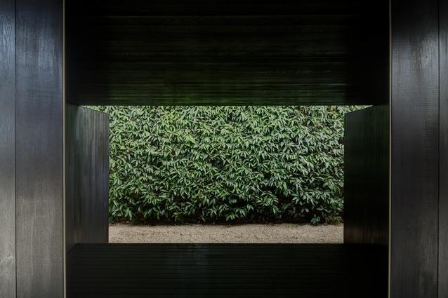 The framed rose-apple hedge.