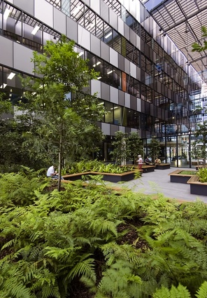 Eco Sciences Precinct landscape by Wilson Architects.