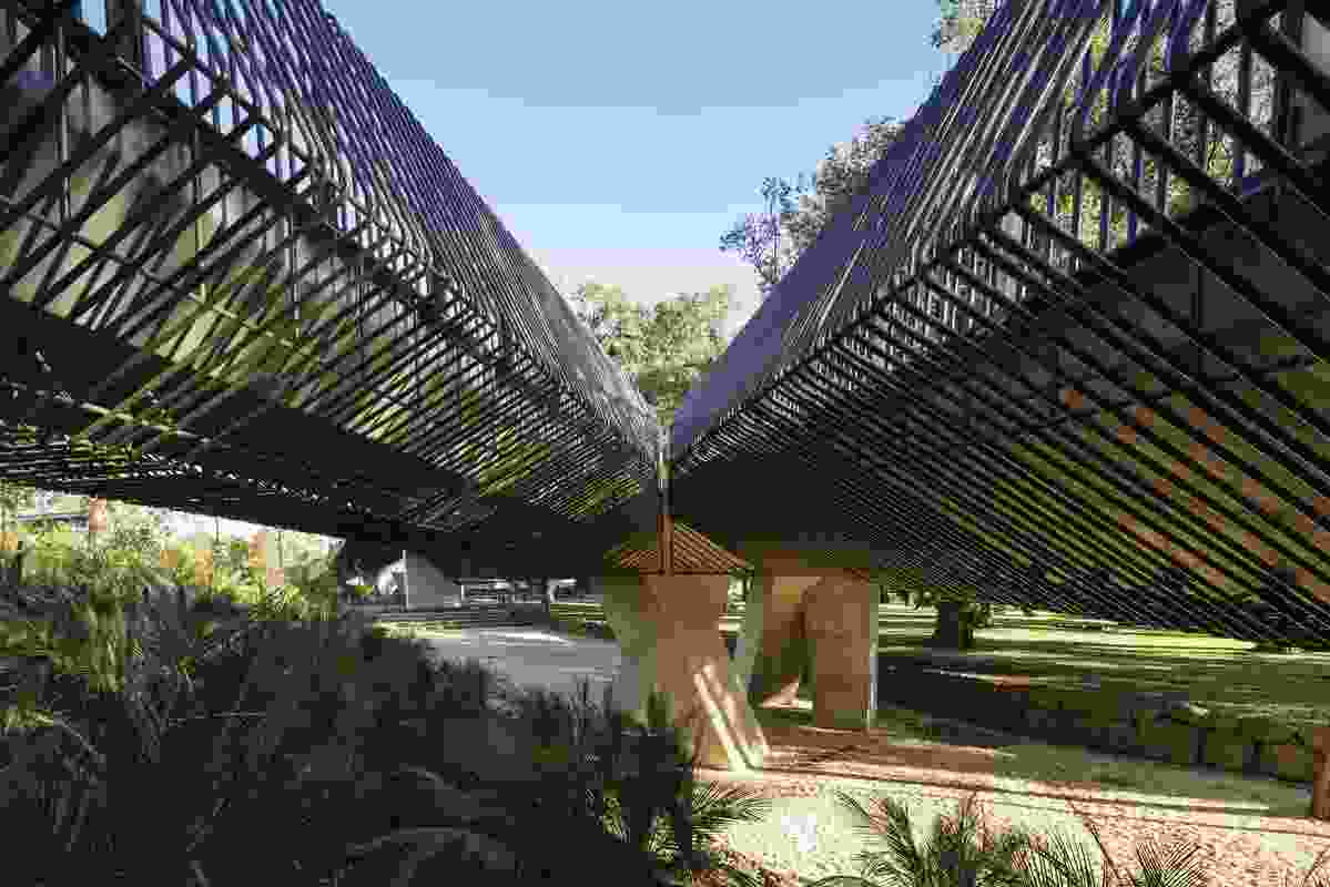Tanderrum Bridge designed by John Wardle Architects and NADAAA begins in Birrarung Marr's lower terrace.