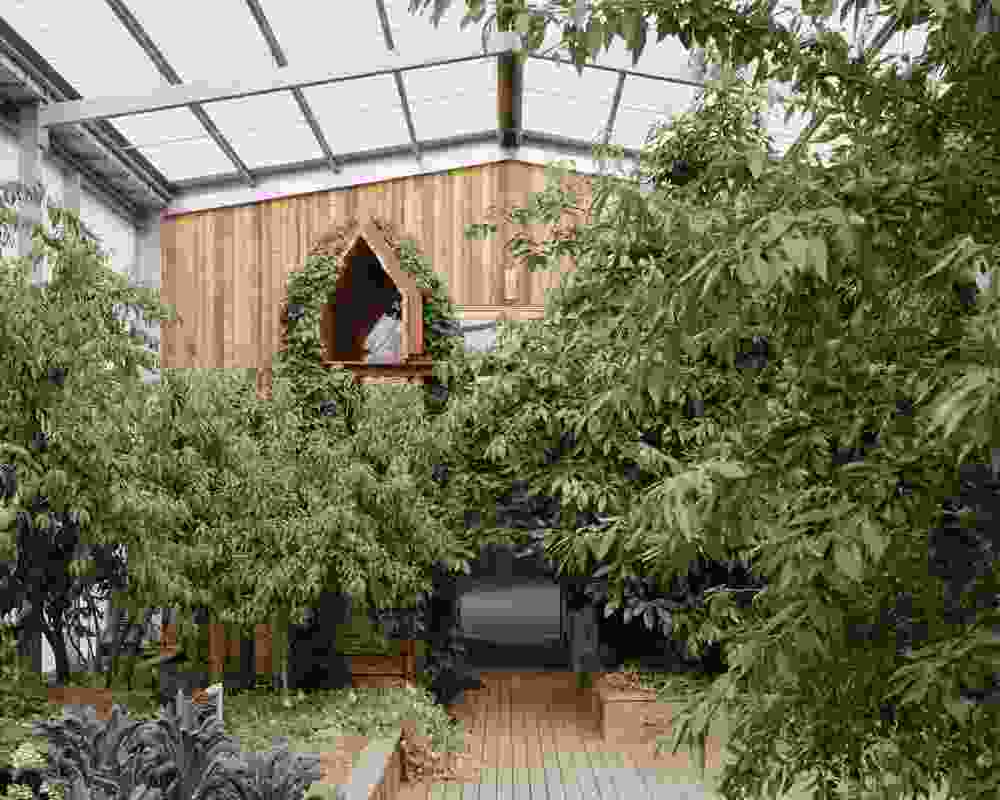 Inside the shed, the different functions are carefully sequenced around a productive greenhouse garden.