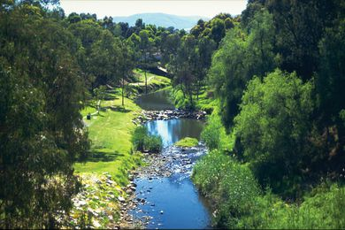 An eastern portion of the River Torrens Linear Park, circa 1990s.
