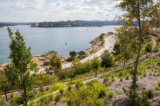 Barangaroo Reserve is visually connect to landmarks across the harbour including Goat Island.