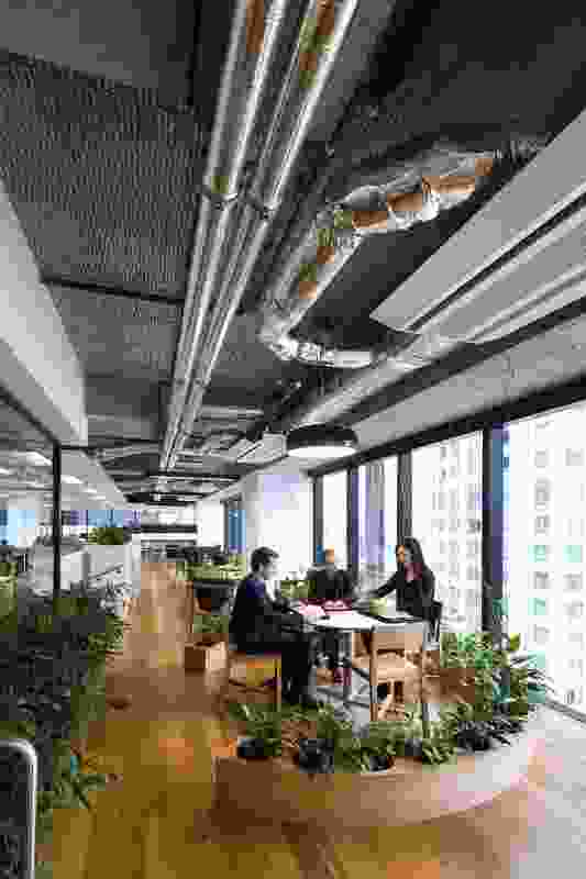 """A peripheral """"spine"""" housing informal work areas allows for user flexibility."""