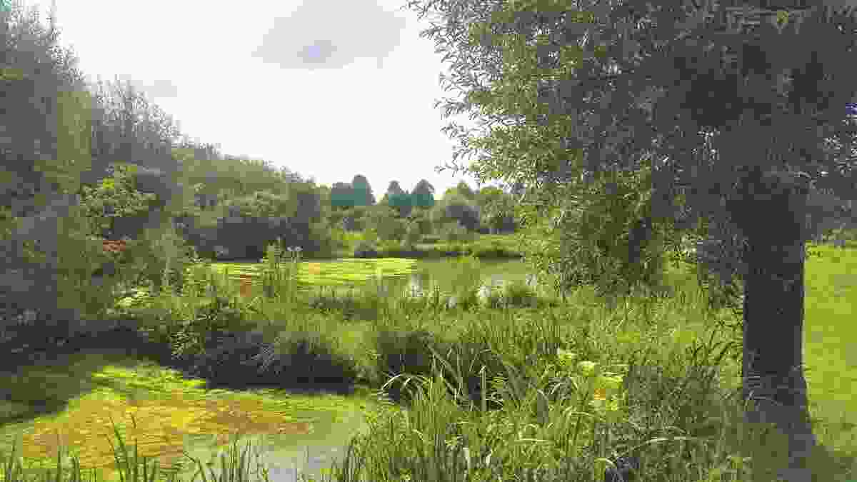 """The characteristic """"Neiderrhein"""" water meadow, next to Museum Insel Hombroich in Germany, restored by landscape architect Bernhard Korte."""