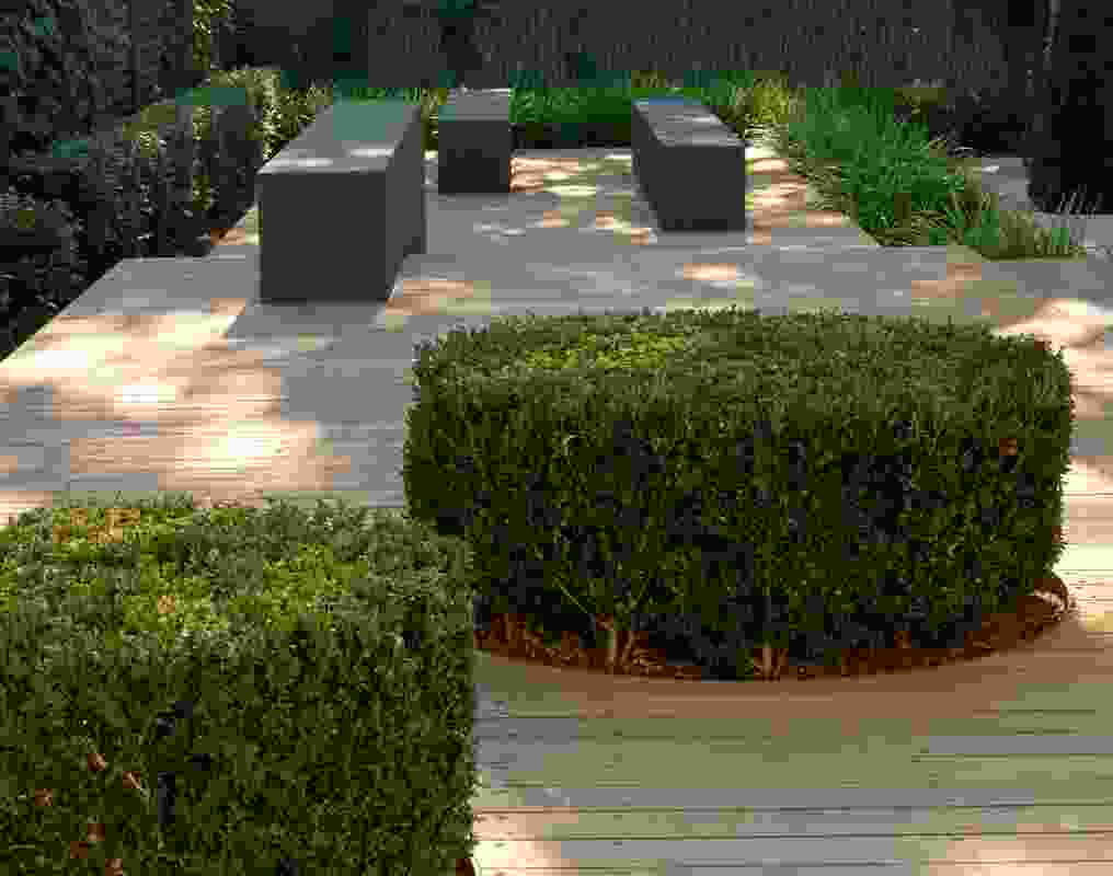 Adelaide Villa Garden by Taylor Cullity Lethlean.