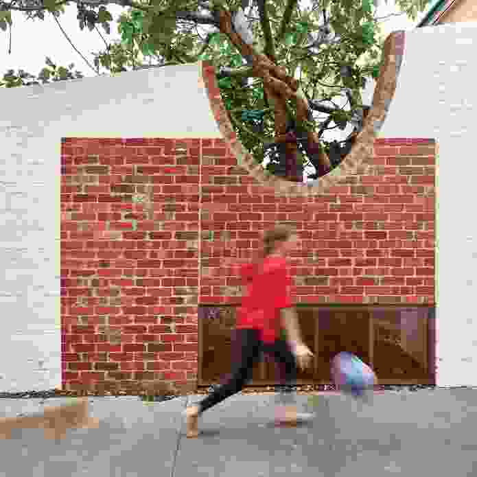 A circular cut-out in the brick boundary wall to the laneway makes way for a fig tree.