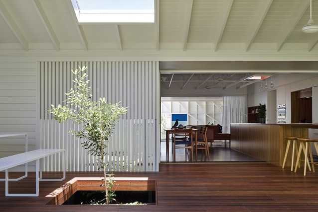 Eagle's award-winning renovation to a 1970s bungalow, Burleigh Street House (2016), prioritizes openness and connection to the landscape.