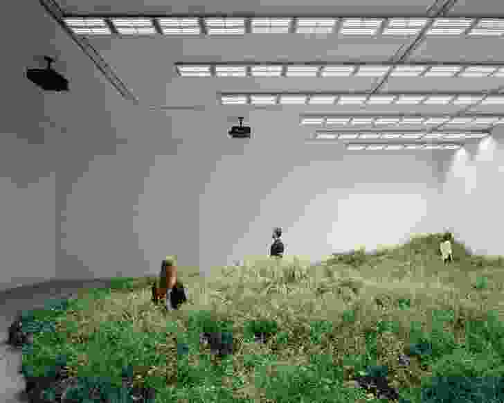 The exhibition's living topography of plants is sustained by a lighting feature, Skylight , which simulates the sun's energy.