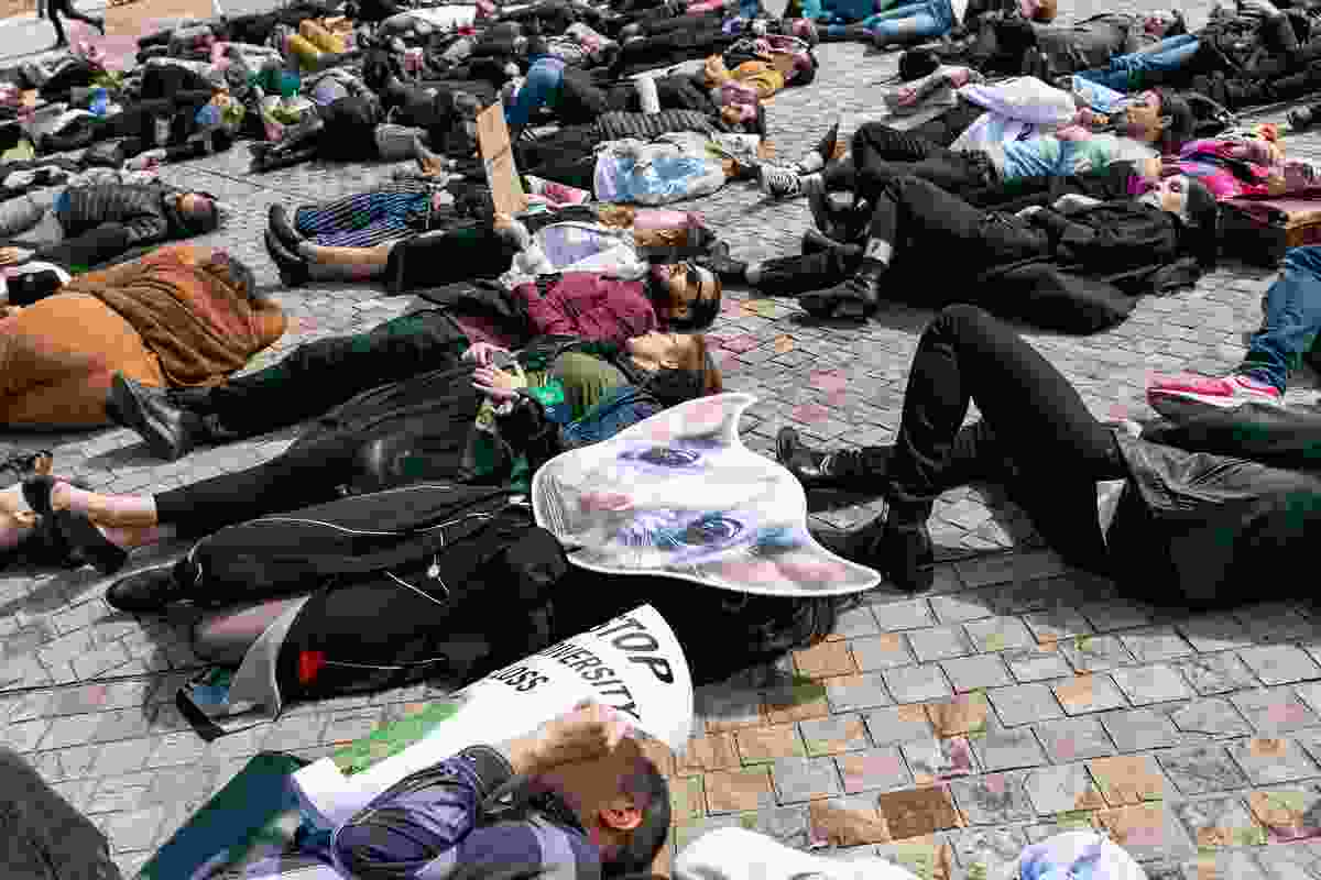 "Delegates participated in a biodiversity ""die-in"", protesting against the impacts of urban development on biodiversity."