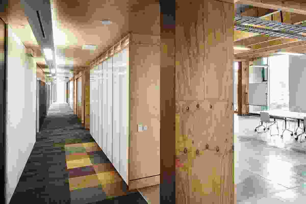 The main circulation corridor opens directly  onto the flexible studio.