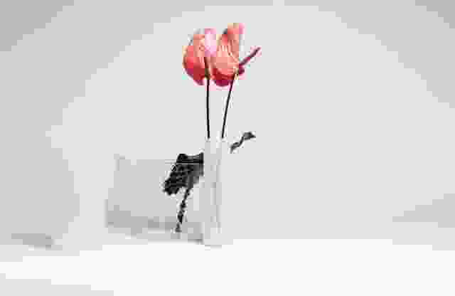 裂纹花瓶收集是一系列清澈的玻璃容器,看起来好像它们被破裂。