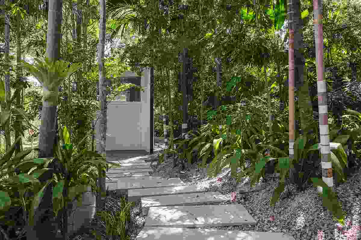 A winding staircase of concrete slabs meanders up through a garden forest to Studio for Indigo Jungle.